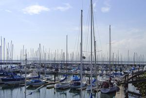 richmond-yacht-club-marina-replacement-3