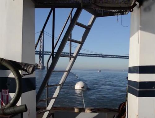 Embarcadero-Potrero Project Completion Video